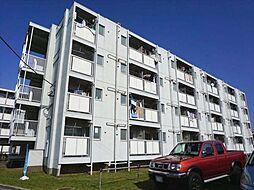 ビレッジハウス勝田3号棟[4階]の外観