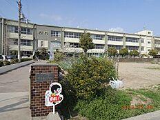 小学校野崎西小学校まで797m