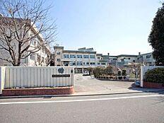 中学校武蔵村山市立第五中学校まで1060m