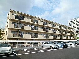 埼玉県さいたま市中央区上落合7丁目の賃貸マンションの外観