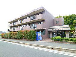 JR鹿児島本線 赤間駅 徒歩12分の賃貸マンション