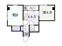 田園調布パインマンションB館(K09045366813)[301号室]の間取り
