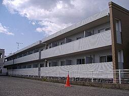 岡山県岡山市北区津島福居1丁目の賃貸マンションの外観