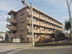 カーサカジマ1[4階]の外観
