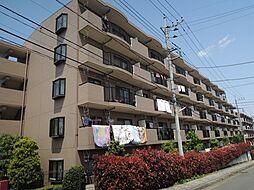 神奈川県相模原市南区鵜野森3丁目の賃貸マンションの外観