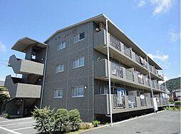 静岡県沼津市西島町の賃貸マンションの外観