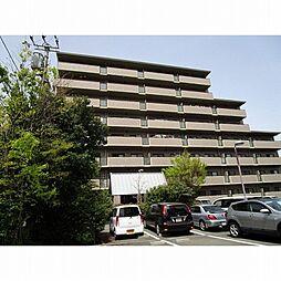 スカール喜多川A棟[1階]の外観
