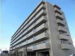 徳島県徳島市庄町2丁目の賃貸マンションの外観