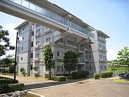 奈良県奈良市左京3丁目の賃貸マンションの外観