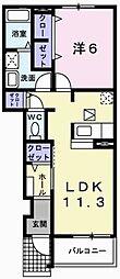 プラシードII 1階1LDKの間取り