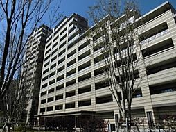 千葉県習志野市奏の杜2丁目の賃貸マンションの外観