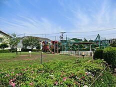 桜上水のびのび公園