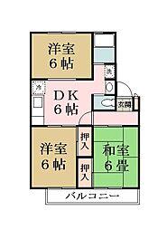 埼玉県草加市青柳5丁目の賃貸マンションの間取り