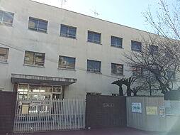 FDS WILL KOHAMA[12階]の外観