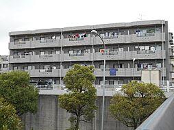 グリーンヒルサイトウ弐番館[4階]の外観