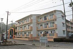 ニチエン青島[106号室号室]の外観