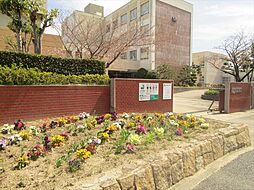 名古屋市立一色中学校 学校教育目標自ら学び、考えることができる、思いやりの心をもった、地域社会に対応できる人間豊な生徒の育成。 徒歩 約24分(約1900m)