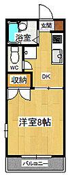 シングルハイツ濱口3[206号室]の間取り