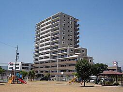 長野県長野市稲里町中央4丁目の賃貸マンションの外観