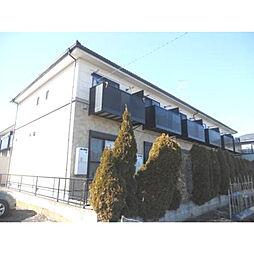 [テラスハウス] 神奈川県愛甲郡愛川町角田 の賃貸【/】の外観