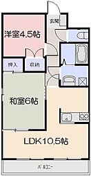 岡山県岡山市南区万倍の賃貸マンションの間取り