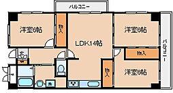 兵庫県神戸市長田区御蔵通2丁目の賃貸マンションの間取り