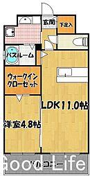 エイペックスVI[5階]の間取り