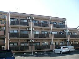 ガーデンハイツ大和田[2階]の外観