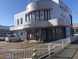 丸岡町一本田テナント