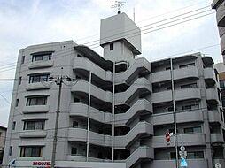 メゾンアオイEX[5階]の外観