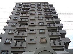 エクセレンス志賀本通[2階]の外観