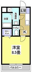 BONITO[5階]の間取り