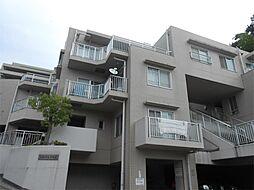 神奈川県横浜市港北区日吉本町5丁目の賃貸マンションの外観