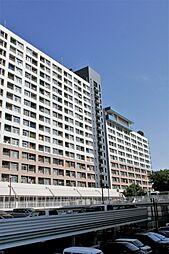 千島団地[3階]の外観