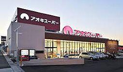 アオキスーパー 東明店 徒歩13分(1009m)