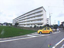 福岡県柳川市三橋町高畑の賃貸マンションの外観