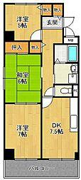 シェルコート南甲子園[2階]の間取り