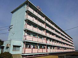 ビレッジハウス城島 1号棟[205号室]の外観