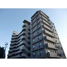 静岡県浜松市中区菅原町の賃貸マンションの外観