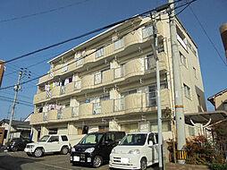 愛媛県松山市枝松3丁目の賃貸マンションの外観