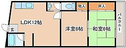 兵庫県明石市魚住町錦が丘4丁目の賃貸アパートの間取り