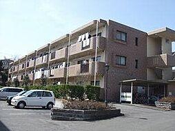 サンツヤマモトB[3階]の外観