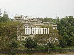 エクレール桜ヶ丘[5階]の外観