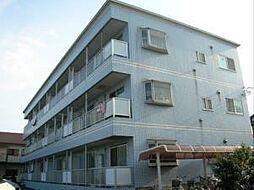 セルアーモ金子[1階]の外観