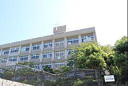 中学校神戸市立 有馬中学校まで2284m