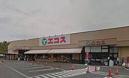 エコス 川口店(1260m)