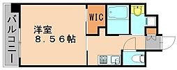 クラッシ—博多[5階]の間取り