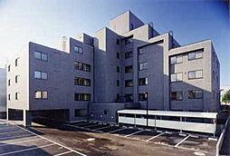 グランメゾン東札幌[203号室]の外観