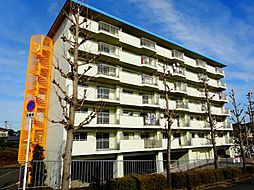 石坂スカイハイツ[3階]の外観