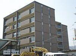 ガーデンシティ柳ヶ崎[103号室]の外観